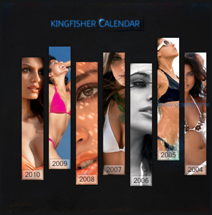 Kingfisher Calendar 2010